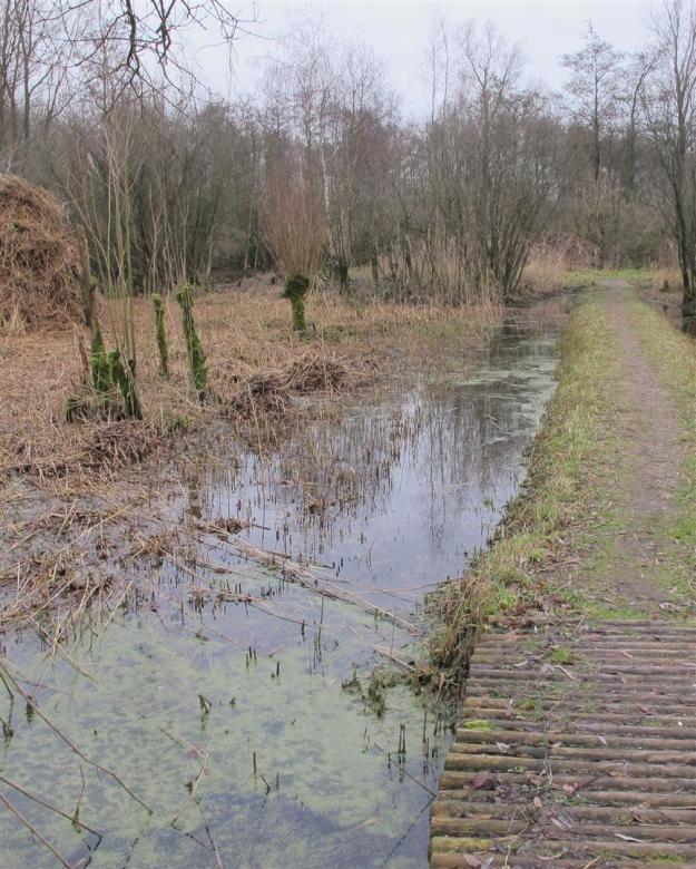 klarenbeek rietland