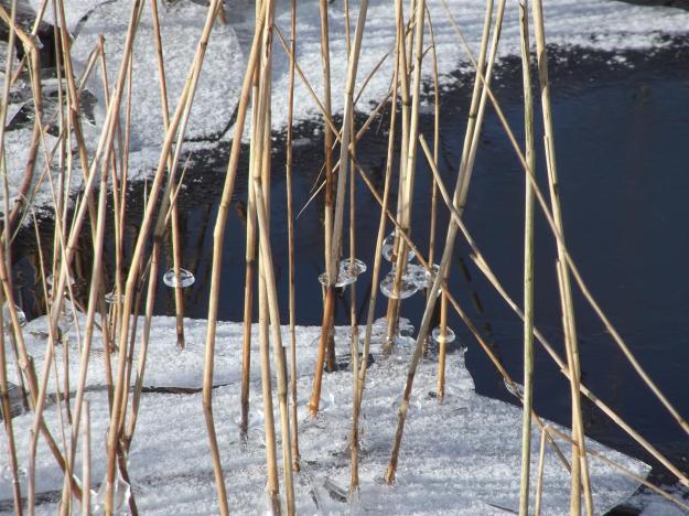 ijs op Klarenbeek